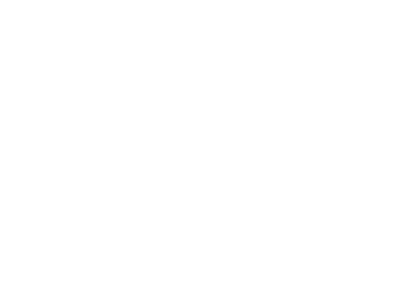 Estrategia Touwolf